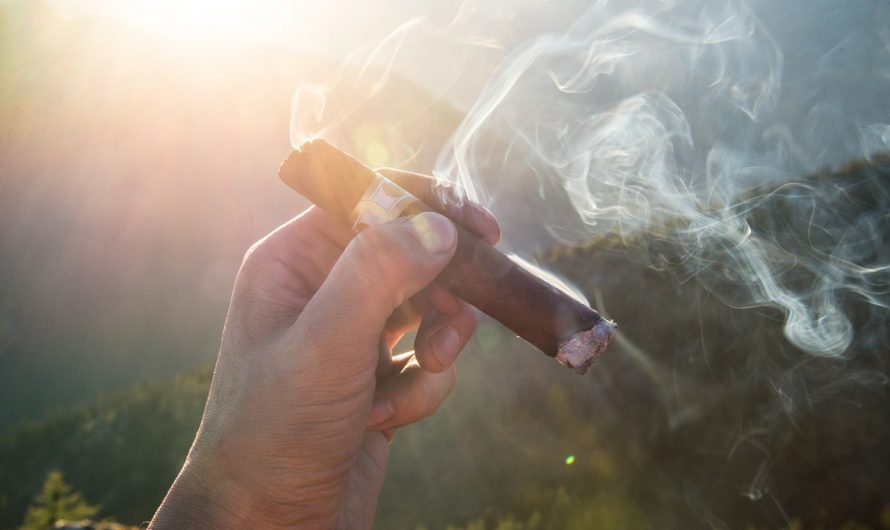 Nos conseils pour débuter dans le monde du cigare